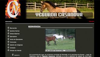 yeguadaWeb