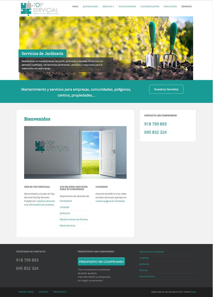 captura_web_top_servicial_alcala_de_henares